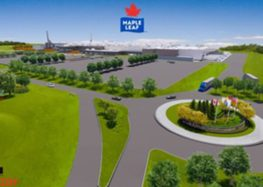 Maple Leaf Foods to build $605 million Poultry Facility in London